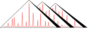 About Pyramid Laboratories | Pyramid Laboratories, Inc